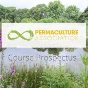Course Prospectus
